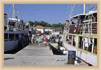 Insel Silba - Hafen